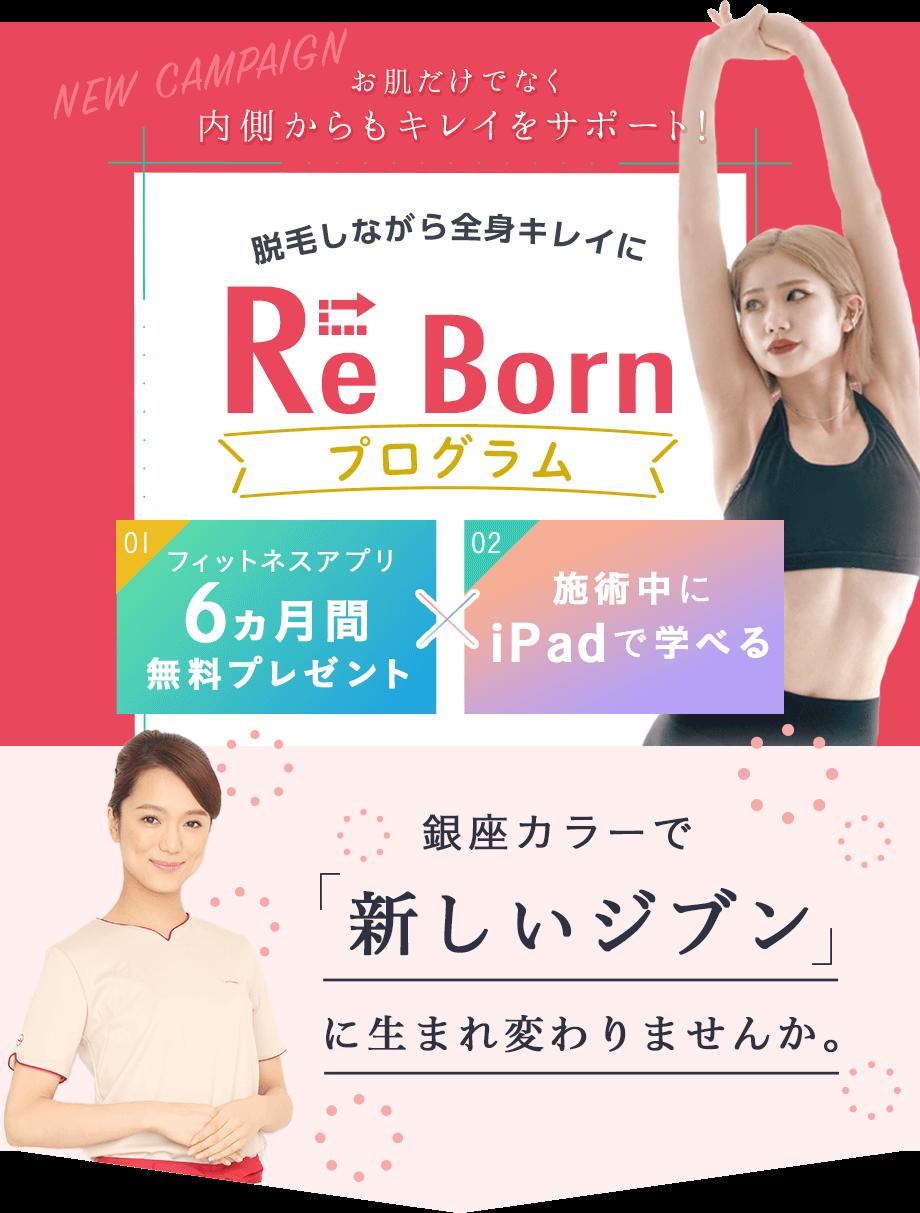 Re Bornプログラム