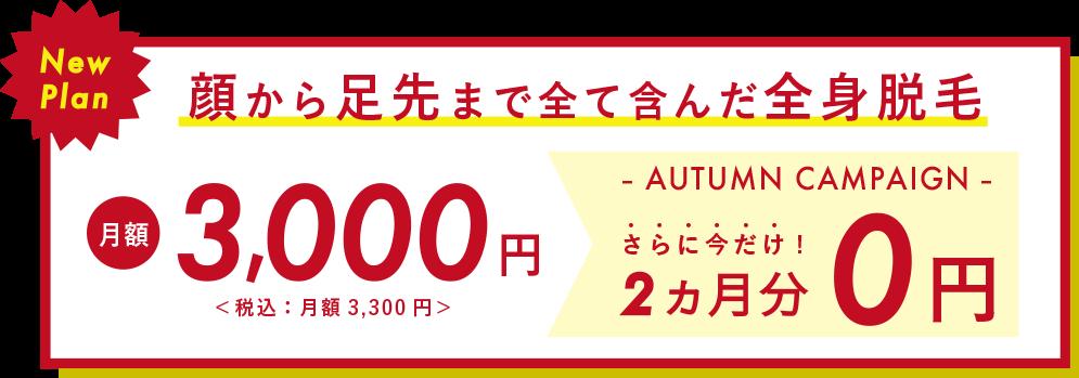 顔から足先まで全身脱毛 月額3,000円(税込:月額3,300円)